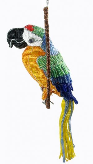 beaded macaw; beaded parrot