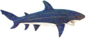 beaded shark